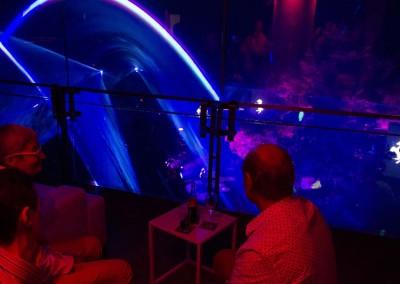 Live show & Lounge